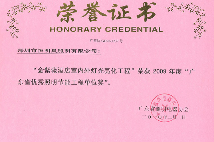 Guangdong Excellent Lighting Engineering Unit Award